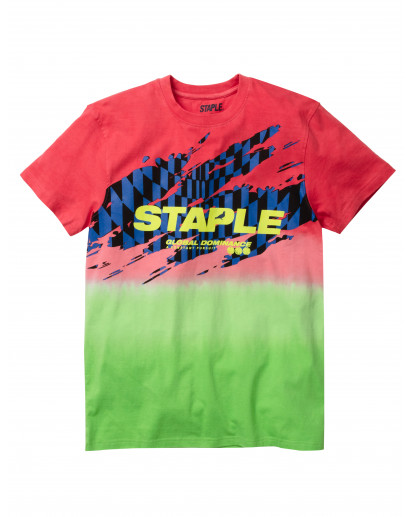 Staple Pigeon - Racing Fade Tee